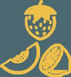 fruit-icon